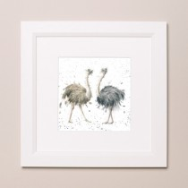 Birdy Wrendale Zoology Set Small Frame