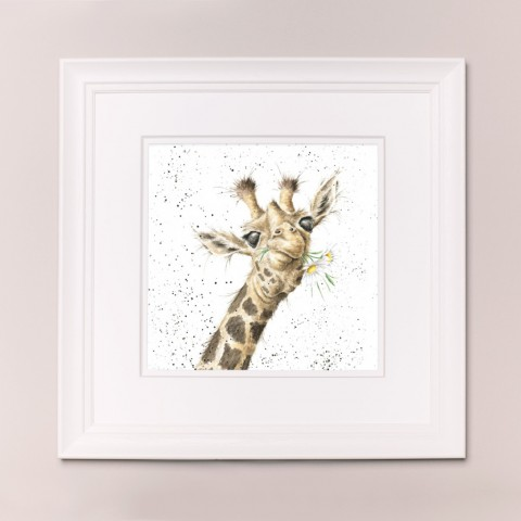 Flowers Wrendale Zoology Set Large Frame