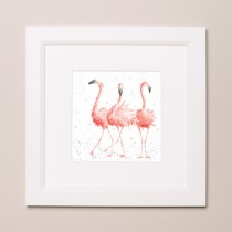 Pink Ladies Wrendale Zoology Set Small Frame